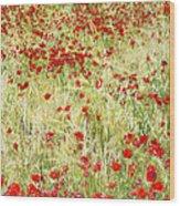 Windy Poppies Wood Print