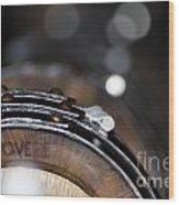 Wine Barrels In Oak Wood Print
