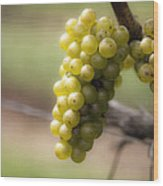 Wine Grapes Wood Print by Leslie Leda