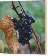 Wine In Time Wood Print