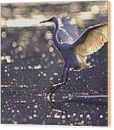Wingdance Wood Print
