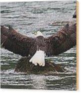 Wings Of Glory 2 Wood Print