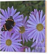 Wings Of Hope Wood Print