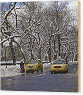 Winter - 2011 Wood Print