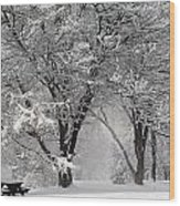 Winter 0002 Wood Print