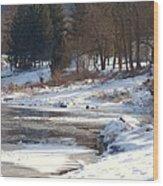 Winter Along The Delaware Wood Print