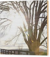 Winter At Greenrise Wood Print