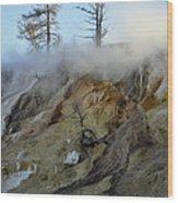 Winter At Yellowstone's Mammoth Terrace Wood Print
