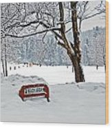 Winter Beach Sign Wood Print by Aimee L Maher Photography and Art Visit ALMGallerydotcom