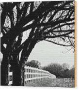 Winter Cherry Wood Print