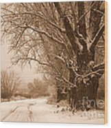 Winter Country Road Wood Print