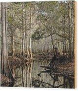 Winter Cypress   Wood Print