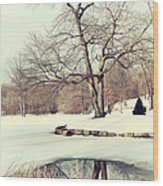 Winter Day In The Park Wood Print