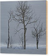 Winter Elegance Too Wood Print