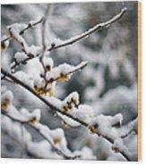 Winter Fleurs Wood Print