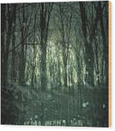 Winter Forest At Twilight Wood Print