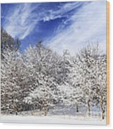 Winter Forest Covered With Snow Wood Print