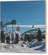 Winter Fun Quebec City Wood Print