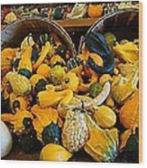 Winter Gourds  Wood Print