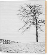 Winter In Black And White Wood Print