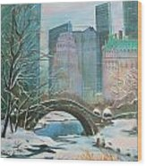 Winter In New York Wood Print