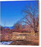 Winter In South Platte Park Wood Print