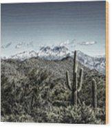 Winter In The Desert Wood Print