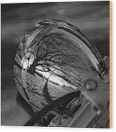 Winter In The Headlight Wood Print