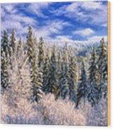 Winter In The Rockies Wood Print