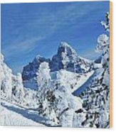 Winter In The Tetons Wood Print