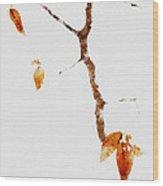 Winter Interludes Wood Print