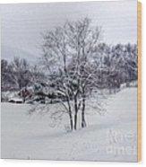 Winter Landscape 6 Wood Print