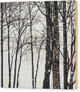 Winter Landscape On Snowy Day Wood Print