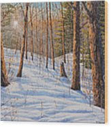 Winter Light Wood Print