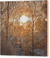 Winter Light Wood Print