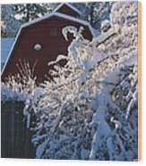 Winter Look Wood Print