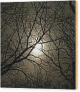 Winter Moon On A Cold Foggy Winter Night Wood Print