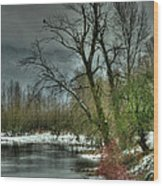 Winter On The Nicomen Slough Wood Print