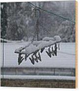 Winter Pegs Wood Print