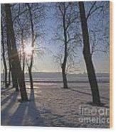 winter Peterburg Russia  Wood Print