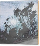 Winter Roadside Wood Print