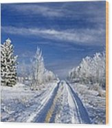 Winter Rural Road Wood Print