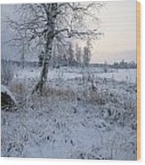 Winter Scene With Snow-covered Grasses Wood Print
