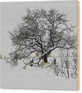 Winter Sentinel Wood Print