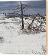 Winter Shenandoah National Park Wood Print by Thomas R Fletcher