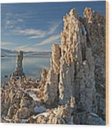 Winter Shoreline Mono Lake Wood Print