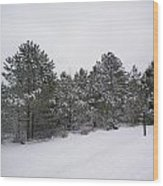 Winter Slope Wood Print