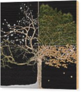Winter Spring Summer And Fall Wood Print