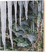 Winter Still Wood Print