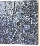 Winter Storm Alert Wood Print